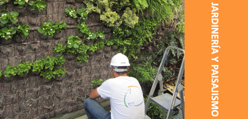 curso formacion jardineria paisajismo malaga